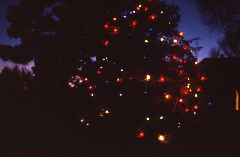 Christmas 1978 (10)